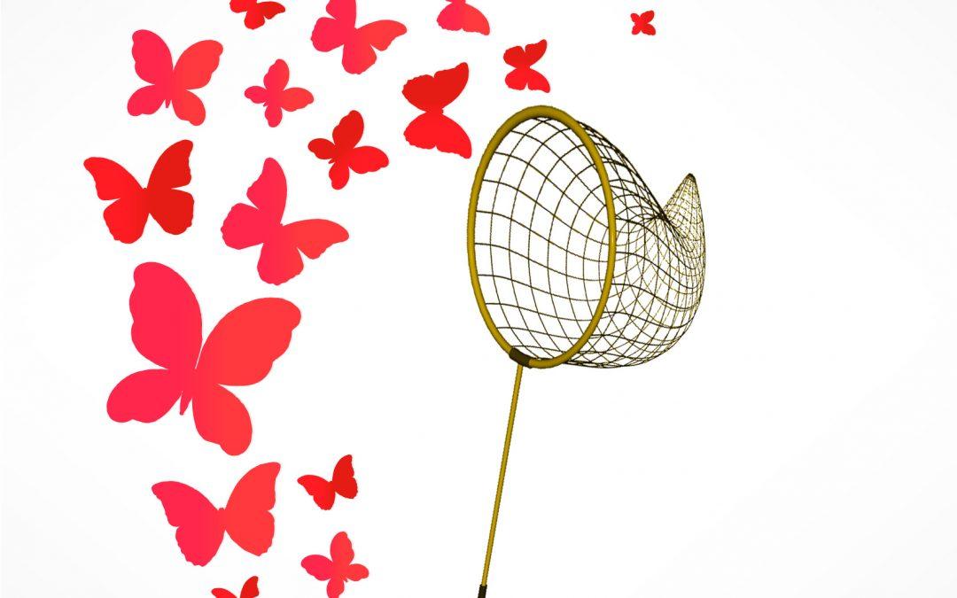 Entreprendre : filet à papillons ou chasse aux mythes, faites le test !
